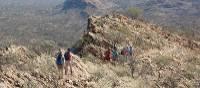 Euro Ridge, Larapinta Trail, Northern Territory | Ian Tedder