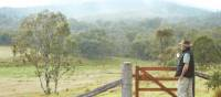 A wonderful morning on the Scenic Rim Trail
