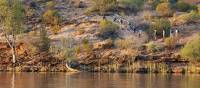 Trekkers ascending a hill along the Murray River