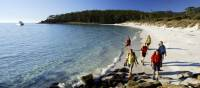 4 Mile Beach - Maria Island | Maria Island Walk