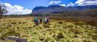 Trekkers admiring the scenery on the Cradle Huts walk | Great Walks Of Australia