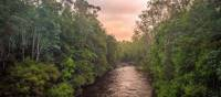 The pristine wilderness of the Franklin River | Glenn Walker