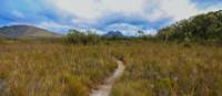 Viewing Mount Solitary from the Port Davey Track | Tourism Australia & Graham Freeman