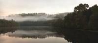 The Pieman River flows through the heart of the Tarkine | Peter Walton
