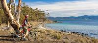 Cycling on Maria Island   Andrew Bain