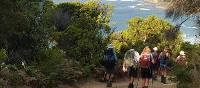 Experience the breathtaking coastal scenery on the Twelve Apostles Walk   Linda Murden
