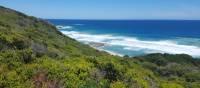 Exploring the stunning coastal scenery on the Twelve Apostles Walk   Linda Murden