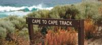 The rugged coastal landscape on our Cape to Cape Trek | Paula Wade